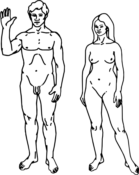polnostyu-golie-zhenshini-i-muzhchini